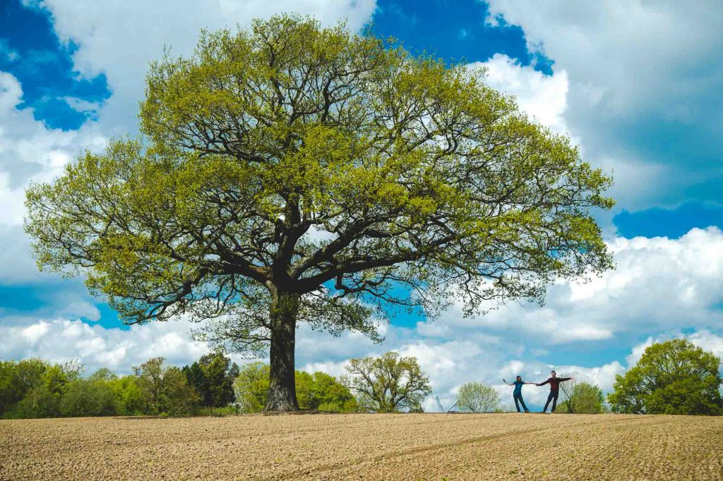 Couple dancing under an oak tree in the middle of an empty field